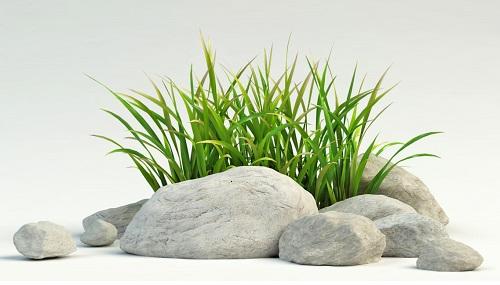 stenar och gräs jag har adhd hjälpmedel